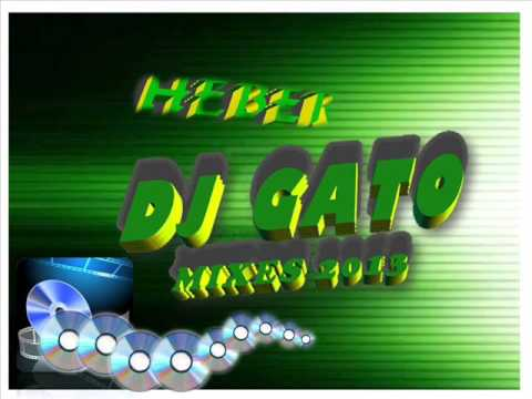 CUMBIA-VILLERA-MIX-AGOSTO-2013-DJ-GATO-PRUEBA-DISCOTECA