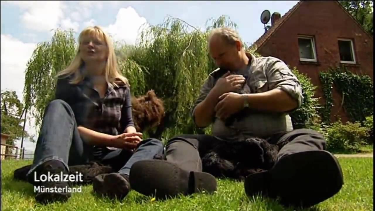 portugiesischer wasserhund lokalzeit m nsterland youtube. Black Bedroom Furniture Sets. Home Design Ideas