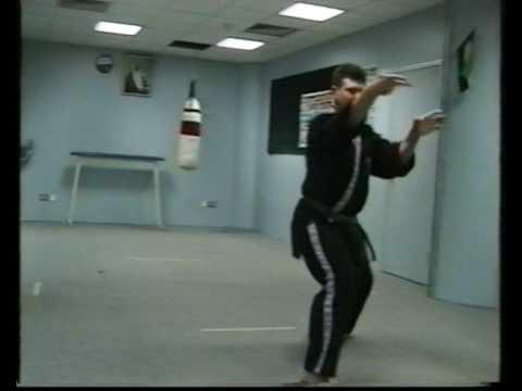 Okinawa-Te   Karate-do eighth video