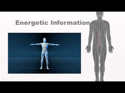 AcuGraph: Systems of the Human Body