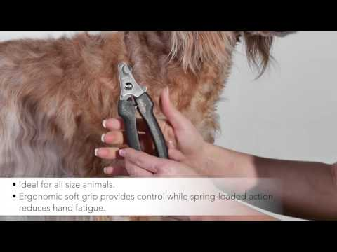 Andis Large Nail Clipper