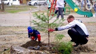 Заводчане пополнили лесной фонд