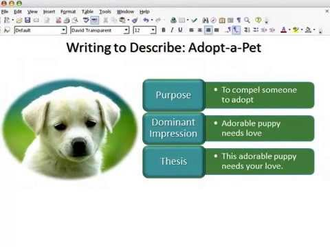 descriptive essay pet dog Essay writing services legit descriptive essay on my pet dog higher computing coursework help masters thesis business technology.