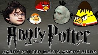 Angry Potter(Harry Potter Meets Angry Birds)parody
