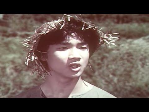Tuổi Thơ Dữ Dội - Tập 2 | Phim Chiến Tranh Việt Nam Đặc Sắc | Phim Điện Ảnh