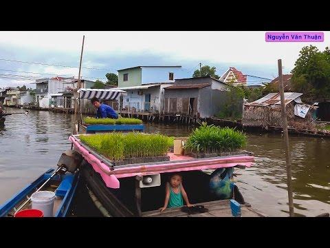 Du Lịch Khám Phá - Huyện Vĩnh Thuận (Kiên Giang) | Vietnam Discovery Travel