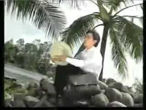 karaoke tanco Ca Dao Em Va Toi -ca voi 545.flv