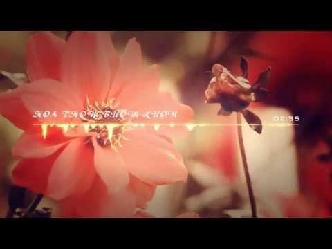 Hoa Thơm Bướm Lượn - Anh Khang