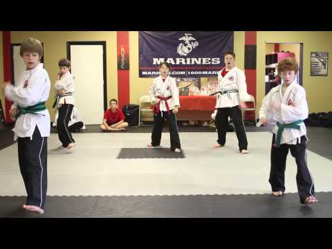 Tiger Rock Tae Kwon Do Summer Camp
