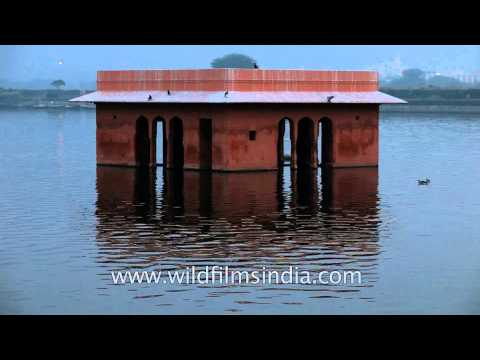 Jal Mahal surrounded by the Man Sagar Lake