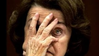 Dianne Feinstein Gets Schooled On Her Own Assault Weapons