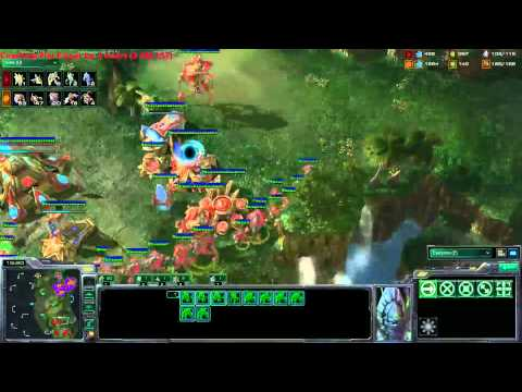 CoL.Minigun's PvZ Lesson 12/09/2011 - Coaching