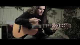 [Black Metal Musician Covers Wake Me Up On Acoustic Guitar] Video