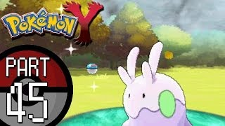 Pokemon X And Y Part 45: Route 14 Catching The Dragon