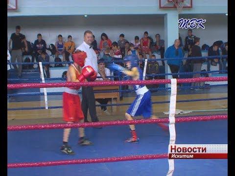 В Искитиме завершился 16-ый турнир по боксу памяти Дениса Бобринского