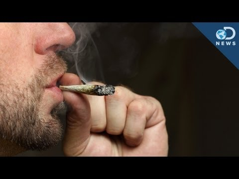 Can Cops Really Prove You're High?