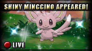 Pokemon X And Y Shiny Hunt Shiny Minccino Appeared