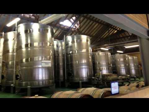 Denbies wine estate Dorking and Reigate Surrey