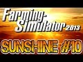 SUNSHINE XXL #10 - Harvest 10
