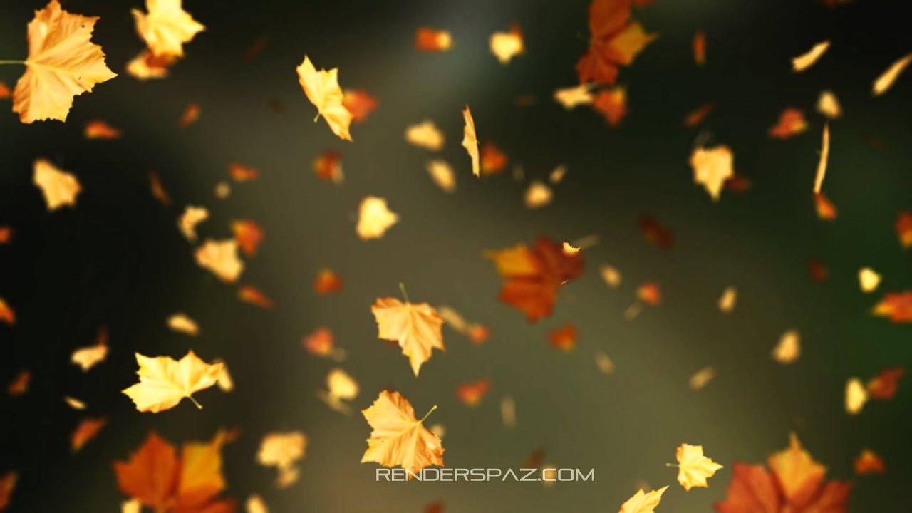 Fall Animated Wallpaper Windows 8 - YouTube