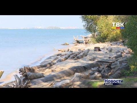 В Бердск прибыли специалисты по берегоукреплению