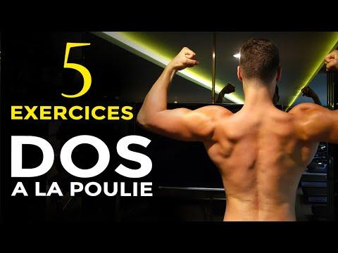 5 MEILLEURS EXERCICES DOS À LA POULIE EN MUSCULATION
