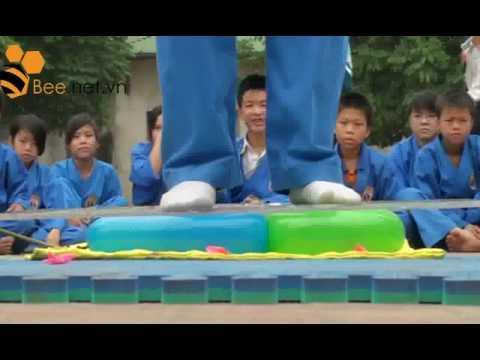Tuyệt kỹ võ thuật Việt Nam: