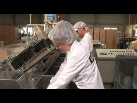 Bao cao su được sản xuất như thế nào?- Trang Công Nghệ