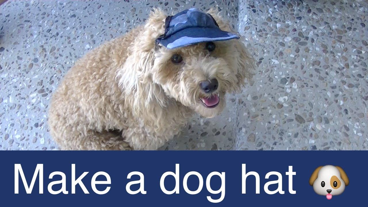 Make dog visor hat cap diy dog food groom clothes a for How to make a shirt for your dog