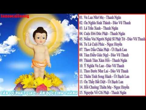 Tuyển Chọn Những Bài Tân Cổ Giao Duyên Phật Giáo Hay Nhất