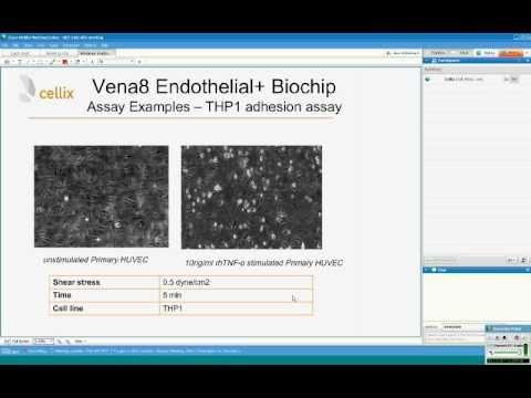 Cellix Webinar: Vena8 Endothelial+TM Biochip