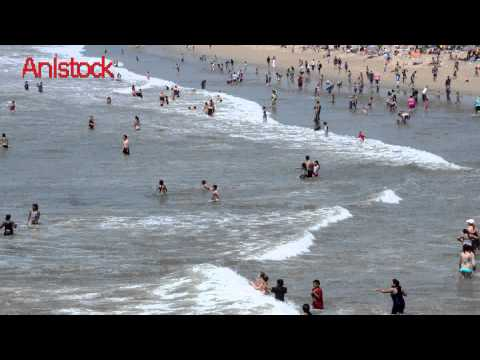 holidays and vacation stock footage