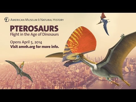 Pterosaurs: Flight in the Age of Dinosaurs Opens April 5