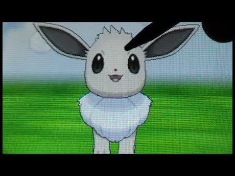Shiny Eevee!! (LIVE! + Evolution) After 814 Eggs! Pokemon Y