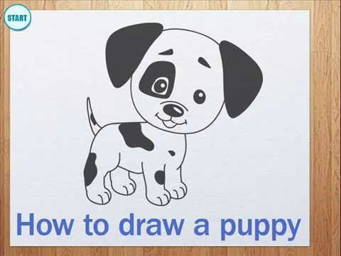 how to draw a puppy step by step youtube