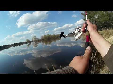 ловля в проводку на днепре видео