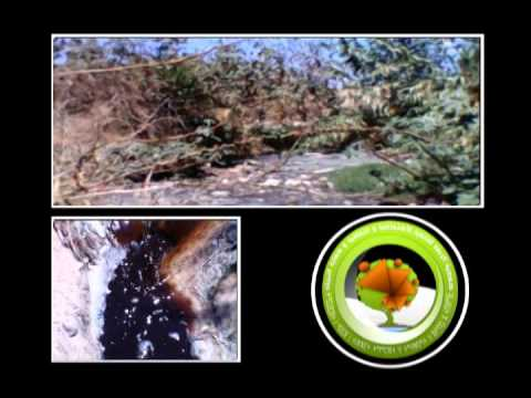 معاناة ساكنة بولمعيز مع المياه العادمة