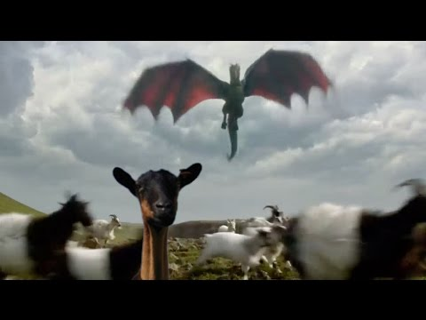 10 AMAZING THINGS ABOUT DRAGONS