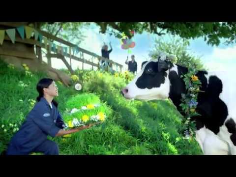 Những cô bò hạnh phúc-Sữa tươi Vinamilk