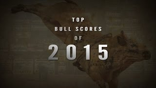 Top Bull Scores of 2015 (PBR)
