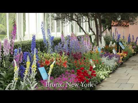 Groundbreakers at the New York Botanical Garden