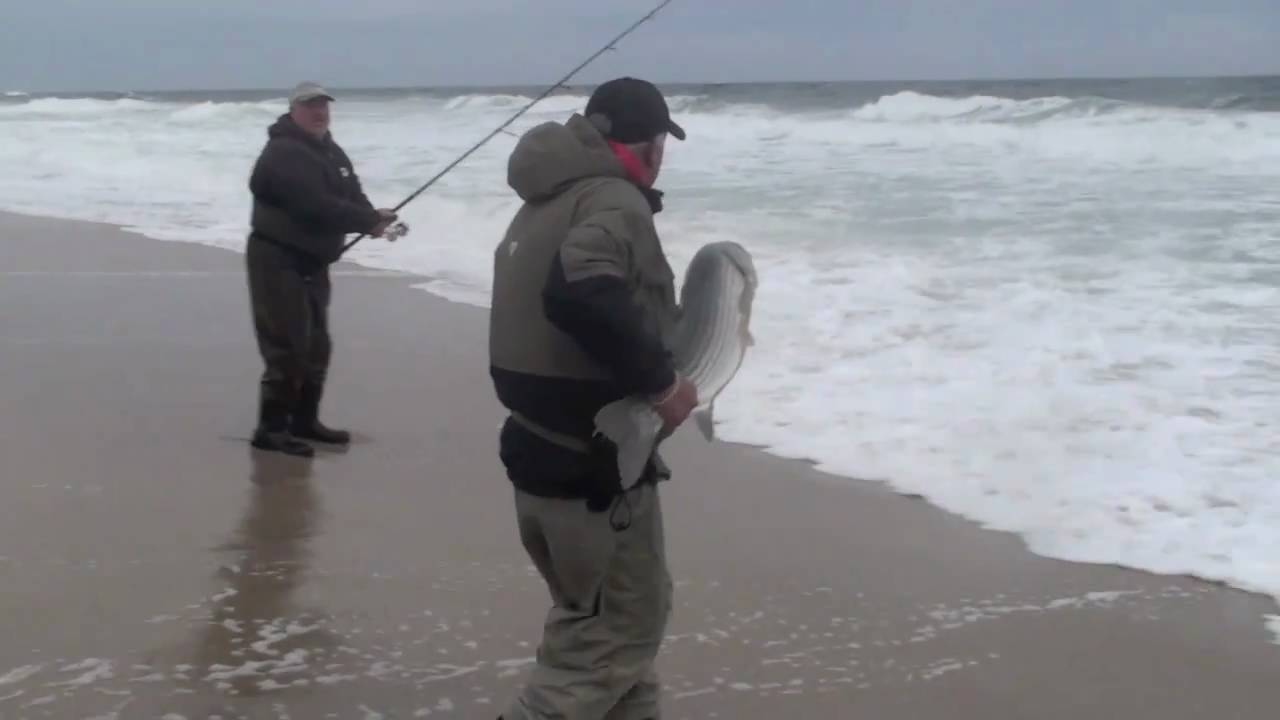Big striped bass caught in the jersey shore surf youtube for Surf fishing nj