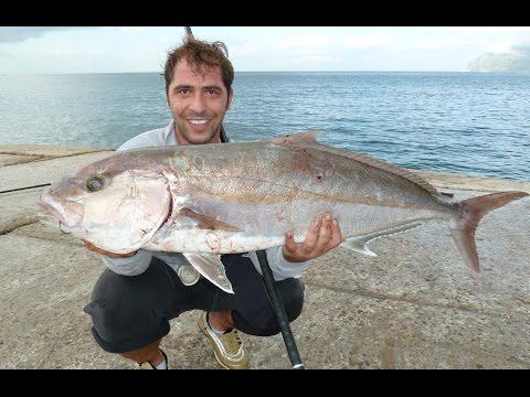 HEAVY CASTING BY ZAVRAS Ch:ΜΑΓΙΑΤΙΚΟ (Amberjack) 14.2 kg ΨΑΡΕΜΑ ΜΕ ΖΩΝΤΑΝΟ EXTREME SALTWATER FISHING
