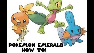 Pokemon Emerald How To Get HM:08 DIVE