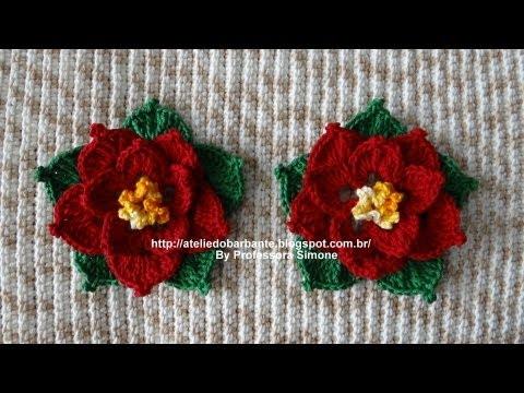 Flor de Natal parte-2