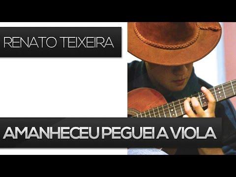 Amanheceu peguei a viola - Renato Teixeira (como tocar aula de viola caipira)
