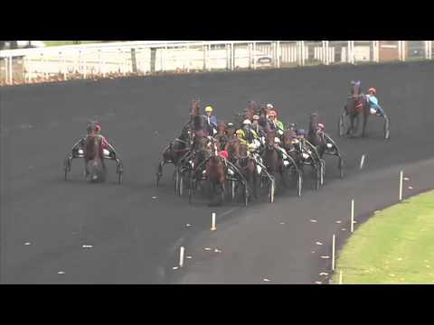Vidéo de la course PMU CRITERIUM CONTINENTAL
