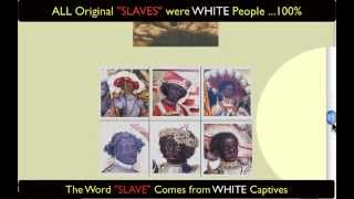 ALL Original Slaves were WHITE - 100