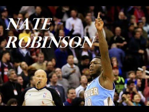 Nate Robinson - Denver Nuggets 2013-14 ᴴᴰ