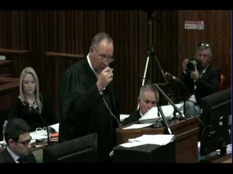 Oscar Pistorius Trial: Thursday 3 July 2014, Session 2